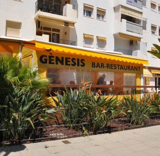 bar-genesis1