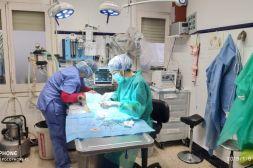 clinica-veterinaria-sala-goron-sitges