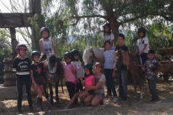 olimpia-equitacio