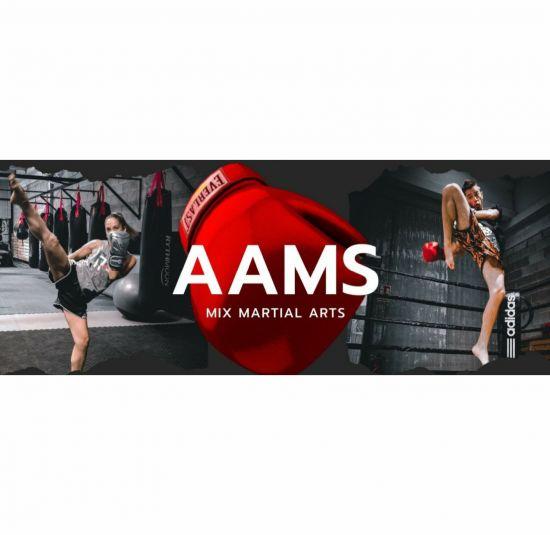 academia-arts-marcials-sitges